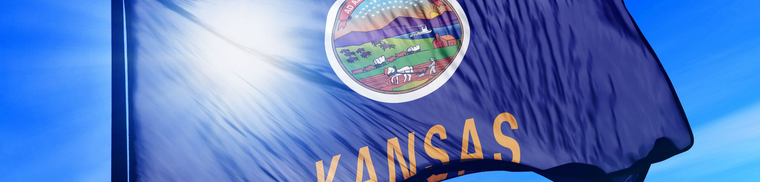 kansas flag small